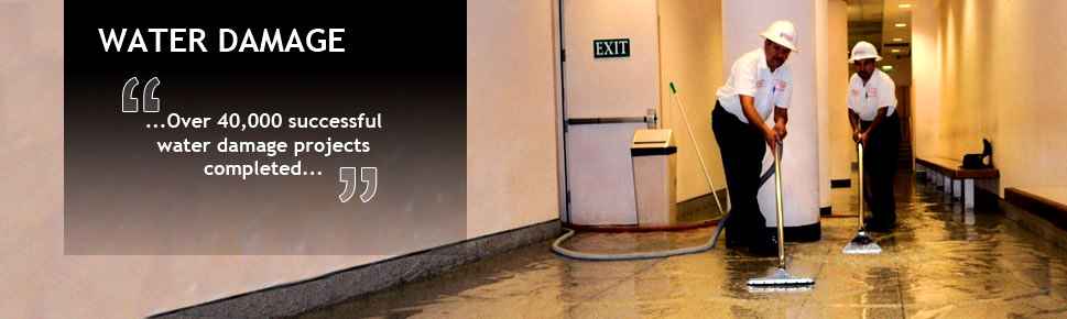 Fire Water Damage Restoration Sewage Clean Up And Mold Remediation Specialists Management Company